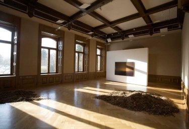 Ausstellungsansicht, Holz und 'Premature Sunrise',  2007 Fotografie auf Dibondplatte hinter Plexiglas