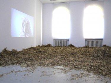 Den Schafen gibts der Herr im Sein, 2012, Video/Rauminstallation, Schloß Borbeck, Essen
