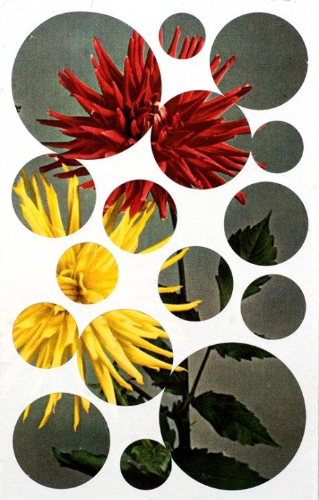Man wird nicht stärker, wenn man versucht, seinen Gegner schwächer zu machen, 2012, Collage, 7,5 x 12 cm
