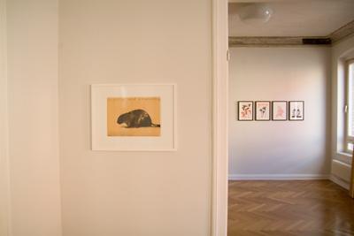 Zeichnungen, Ausstellungsansicht